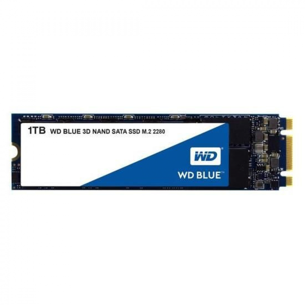 WD BLUE WDS100T2B0B 1 To SATA M.2